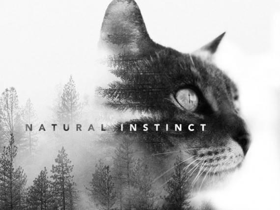 Natural-Instinct