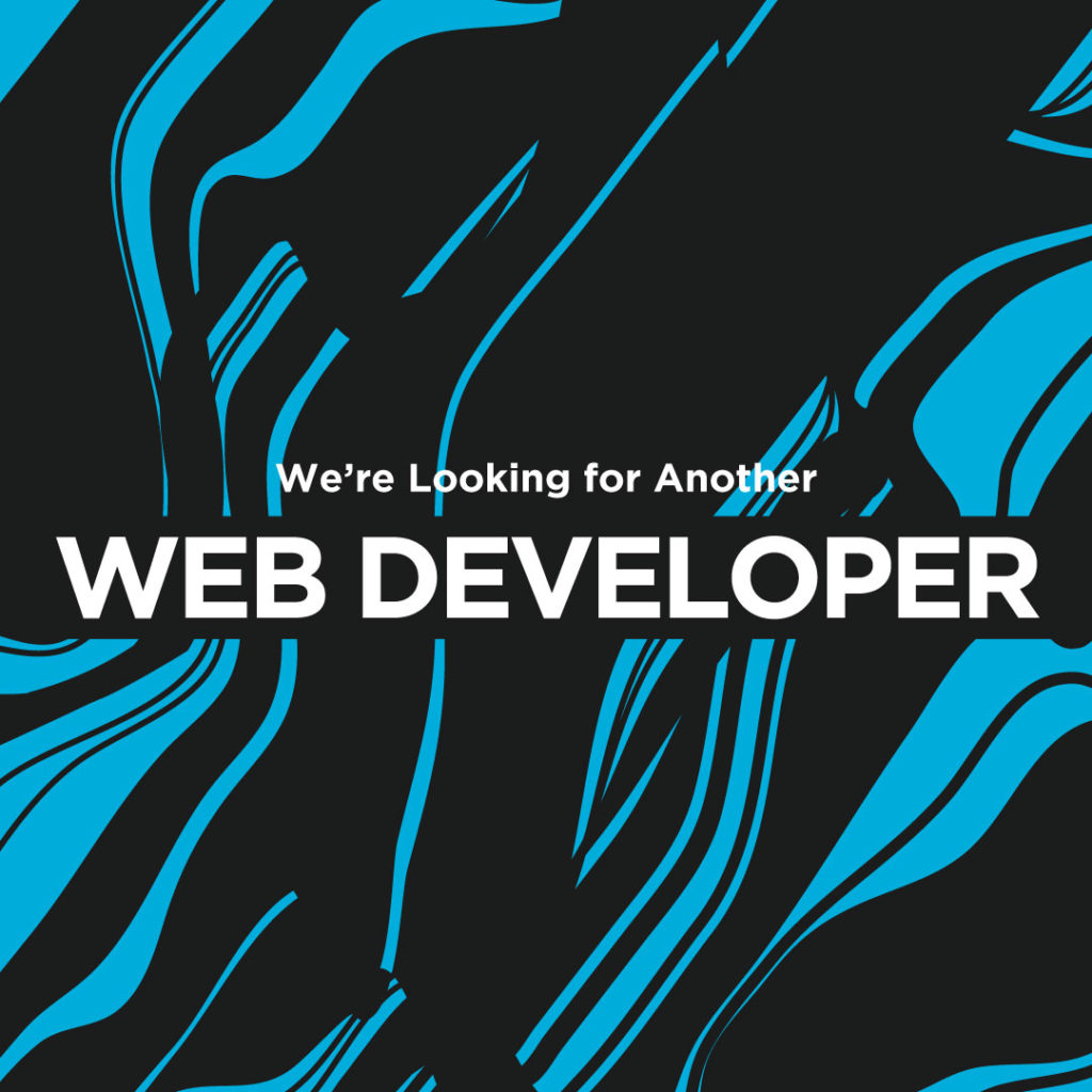 Blue Ion is looking for a new Web Developer